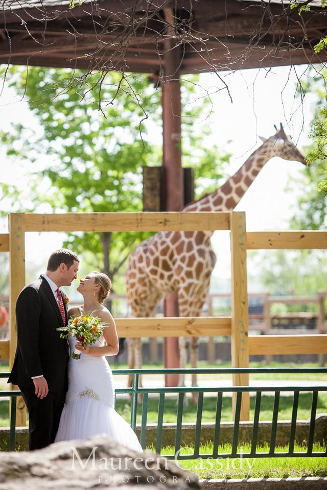 zoo wedding in madison