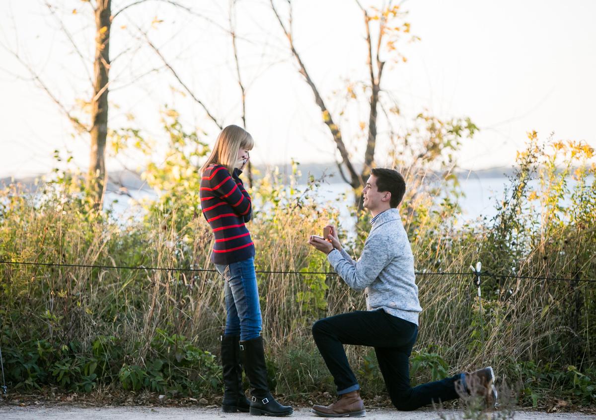 wedding proposal in madison